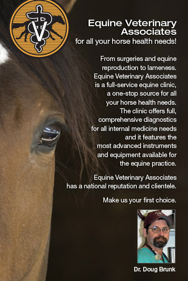 Equine Veterinary Associates, for all you horse health needs!